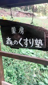 日本のアムチに会いに行く